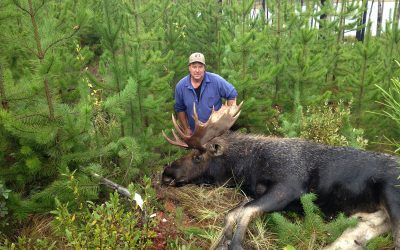 Shipping Meat from your BC Moose Hunt to the USA