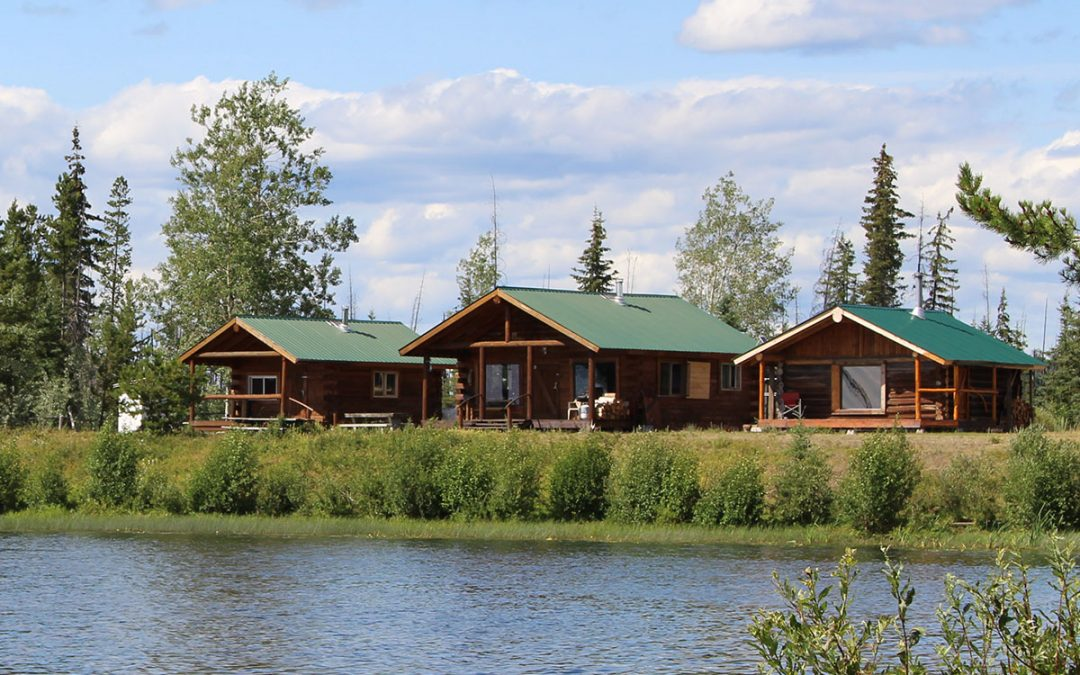 European's Guide to Choosing a Top Moose Hunt in BC