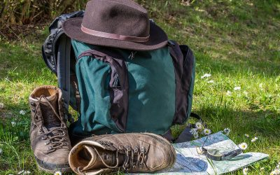 Black Bear Hunting in Canada: 5 Essentials for your Packing List
