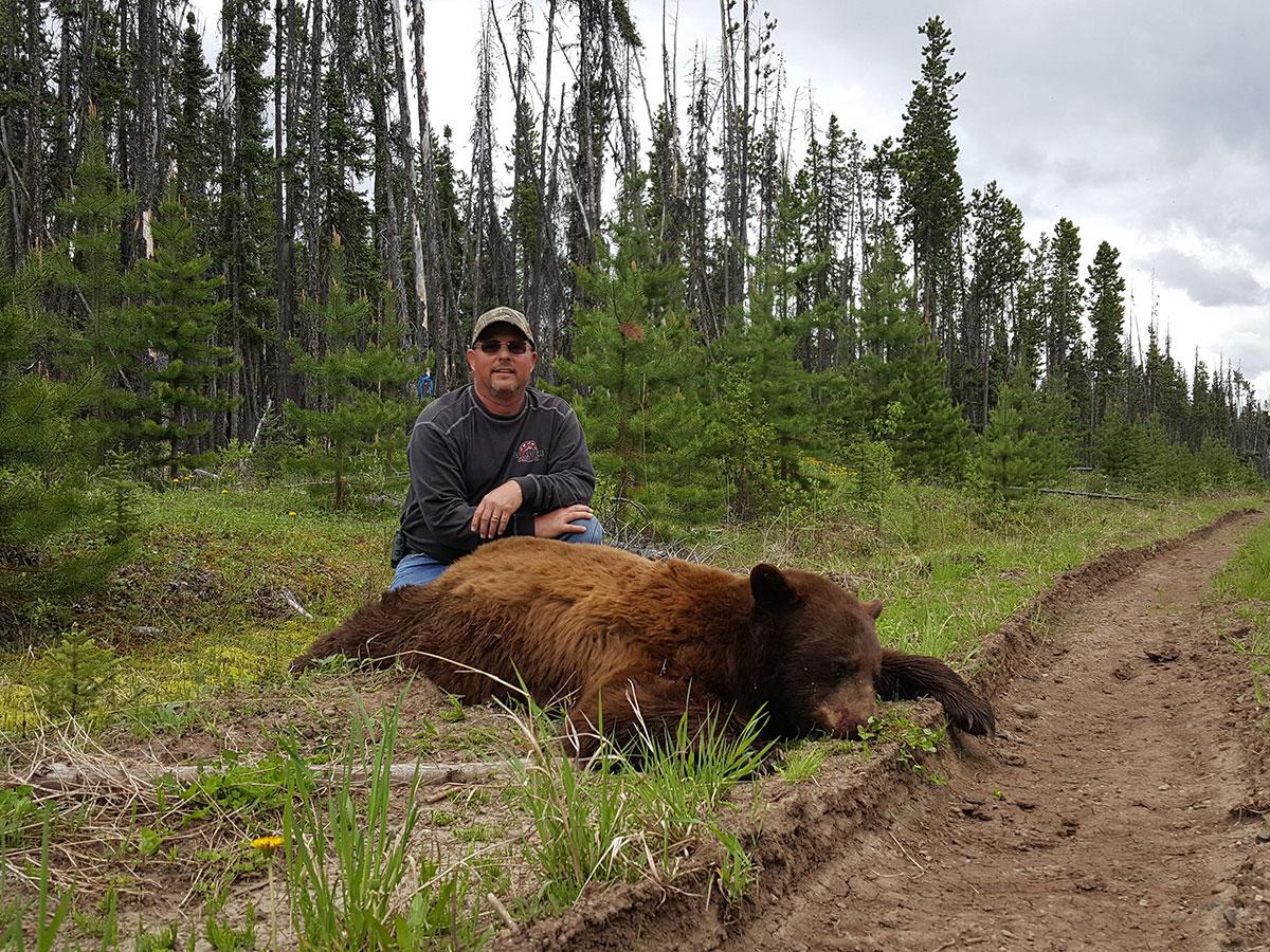 BC Color Phase Bear Hunt